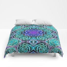 Echeveria Bliss Comforters