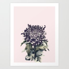 Flowers near me 15 Art Print