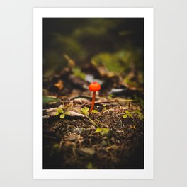 Lonely Red Shroom - Neon by Nature - @zekekitchen Art Print