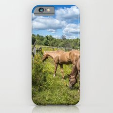 Out to pasture iPhone 6s Slim Case