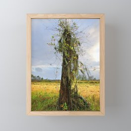 Barren Tree Spanish Moss Of Brazos Bend State Park Framed Mini Art Print