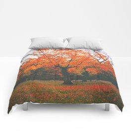 Bright Orange Fall Tree Comforters