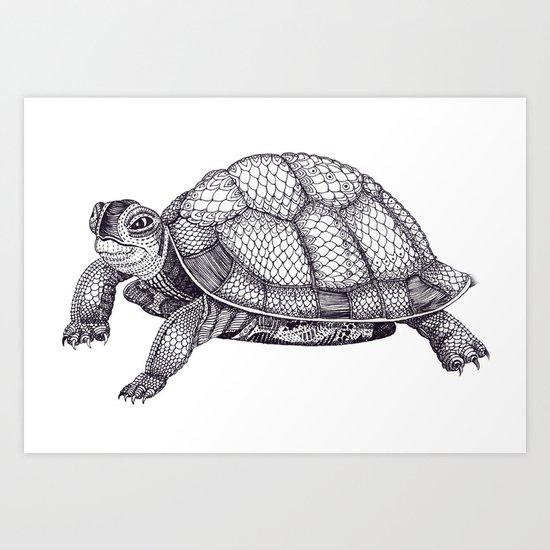 Turtle Pattern Art Print