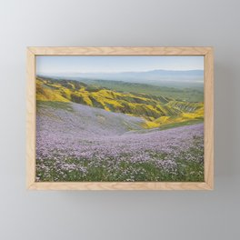 California Wildflowers Framed Mini Art Print