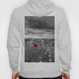 Fields Hoody