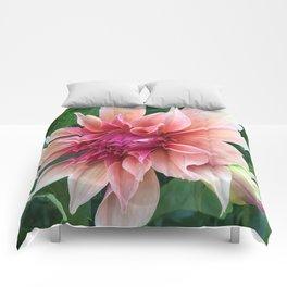 438 - Dahlia Comforters