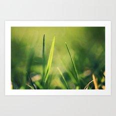 Spring Green Art Print
