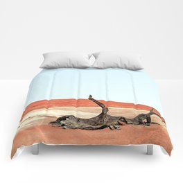 Deadvlei I Comforters