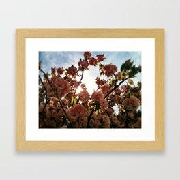 FlowerRing  Framed Art Print