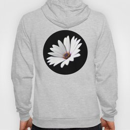 Daisy flower blooming close-up Hoody