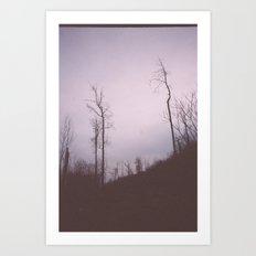 These trees still stand tall Art Print