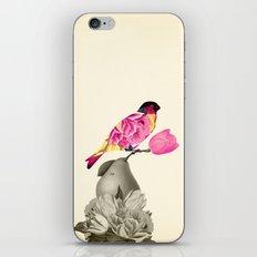 The Bird & the Pear iPhone & iPod Skin