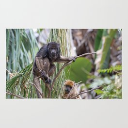 Pair of Howler Monkeys watching Rug