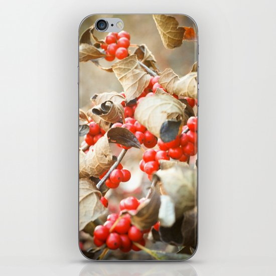 Winter Berries iPhone & iPod Skin