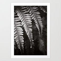 Secret Garden ~ No.8 Art Print