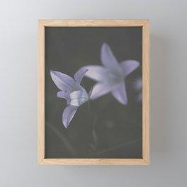 Botanical Still Life Photography Lily Wildflower Framed Mini Art Print