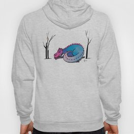 Let Sleeping Dragons Lie Hoody