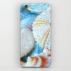 Aquatic Lines iPhone & iPod Skin