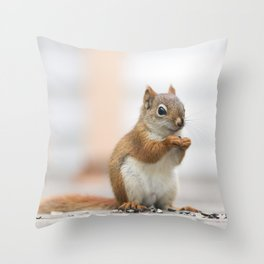 Red Squirrel 3 Throw Pillow