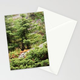 Within the Silent Forest Stationery Cards