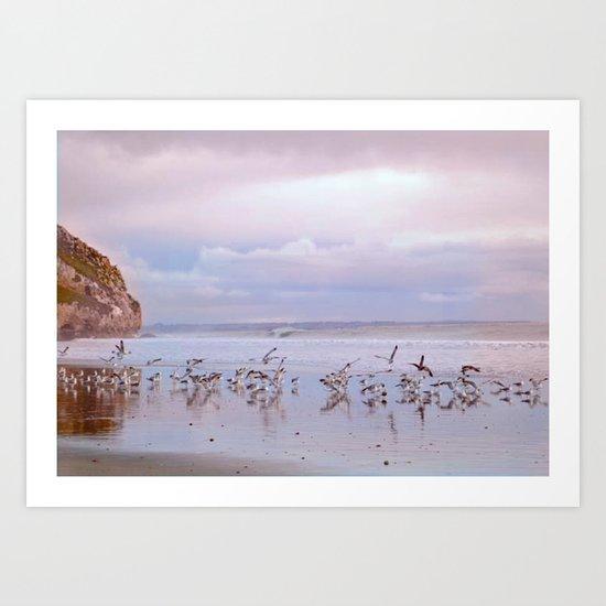 Seabirds on Shore Art Print