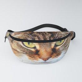 Curious Cat Fanny Pack