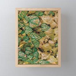 leaves evolved 3 Framed Mini Art Print