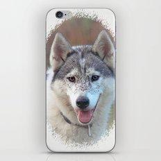 Husky iPhone & iPod Skin