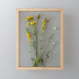 Wild yellow flowers | Floral Photography Framed Mini Art Print