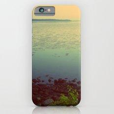 Potomac Slim Case iPhone 6s