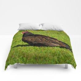 Buzzard Comforters