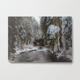 A Quiet Place - Pacific Northwest Nature Photography Metal Print