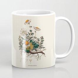 Camomile Antique Botanical Illustration Coffee Mug