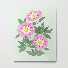 Pink Bindweed Flowers Metal Print