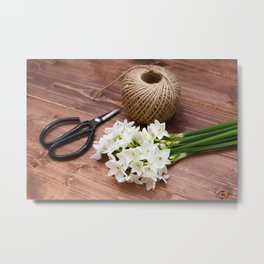 Narcissi with scissors and twine Metal Print