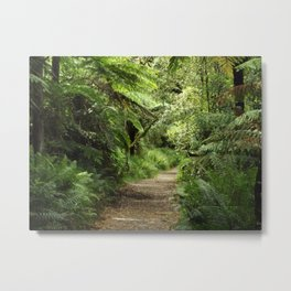 Find Your Path Metal Print