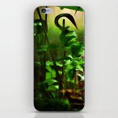 Opening and Upward iPhone & iPod Skin