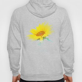 It's the sunflower Hoody