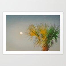 Moon and Palm Art Print