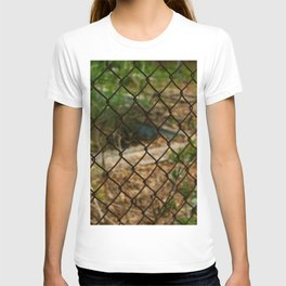 Rusted Barrier T-shirt