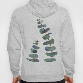 Watercolor Eucalyptus Hoody