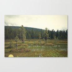Four Mile Meadow 02 Canvas Print
