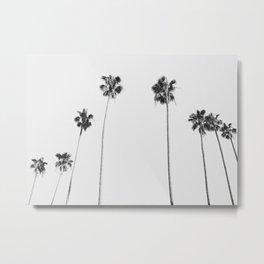 Black & White Palms Metal Print