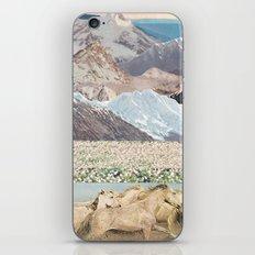 Washes iPhone & iPod Skin