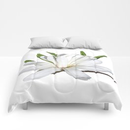 The Flower is the Star (Magnolia) Comforters