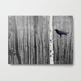 Black Bird Crow Tree Birch Forrest Black White Country Art A135 Metal Print