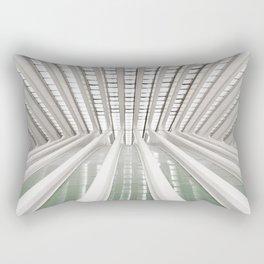 Modoo Centre Rectangular Pillow