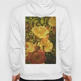 Vintage Climbing Roses Hoody