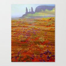 arizoner Canvas Print