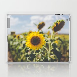 Allora | Sunflowers Laptop & iPad Skin